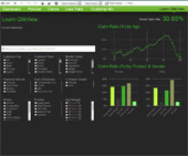 Business-Qlik for Insurance